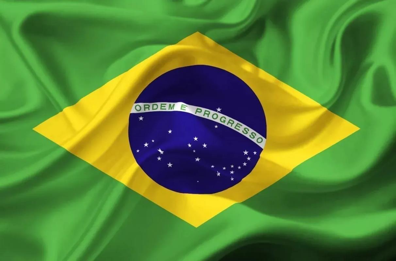 Adesivo Brasil Bandeira Sticker 50x35cm