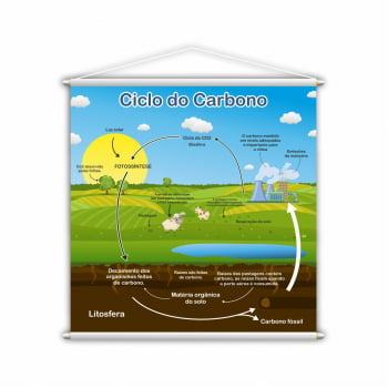 Banner Pedagógico Ciclo do Carbono Ilustrado 80x80cm