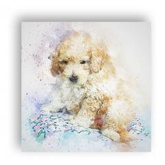 Quadro Cachorro Cão Poodle Dog Decoração 60x60cm