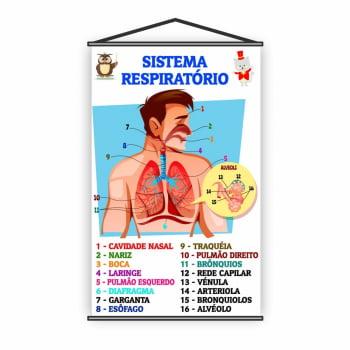 Banner Pedagógico Escolar Sistema Respiratório